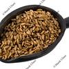 scoop of spelt wheat berries