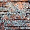 red sandstone with silver lichen
