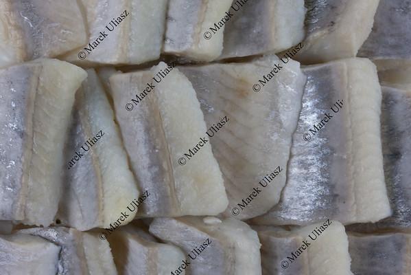 sliced herring background