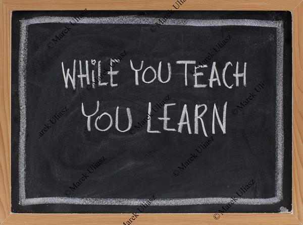 while you teach, you learn