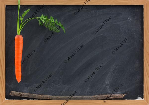 carrot, stick and blackboard - school motivation