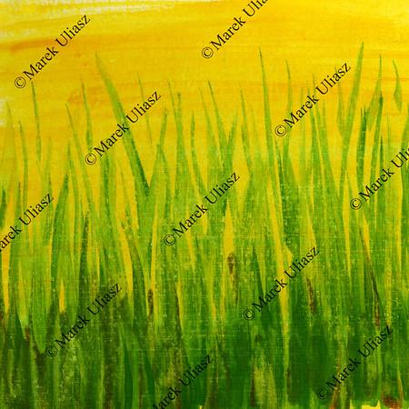 grass - green yellow grunge painted texture