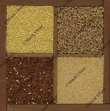 millet. spelt, amaranth, quinoa grains