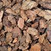 western bark nuggets background