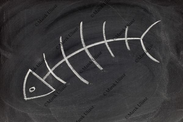 fish skeleton - blackboard drawing