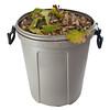 dry leaves in a plastic garbage bin