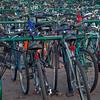 bicycle parking at university campus