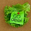 go green concept on bulletin board