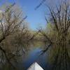 kayaking a calm river in springtime