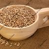 scoop of rye grain