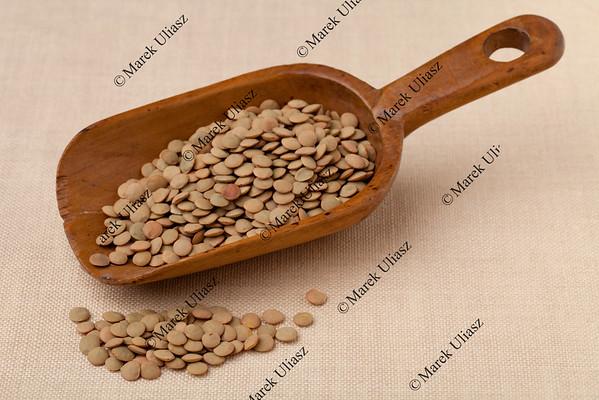 rustic scoop of green lentils