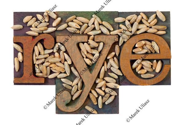 rye word and grain