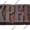 expert word in letterpress type