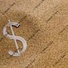 dollar in desert sand