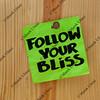 follow your bliss - spiritual reminder