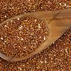 red quinoa grain and spoon