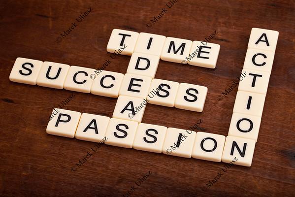 success components crossword