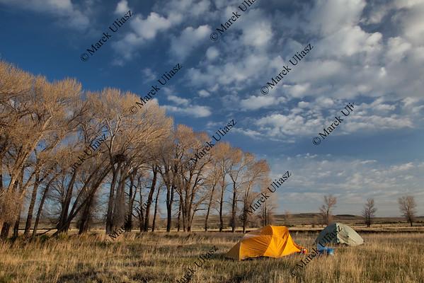 spring camping in Wyoming