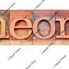 theory word in letterpress type