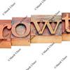 growth in letterpress type