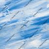 blue white wood texture