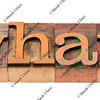 what question in letterpress type