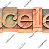 pricesless word in letterpress type