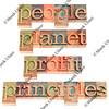 people, planet, profit, principles