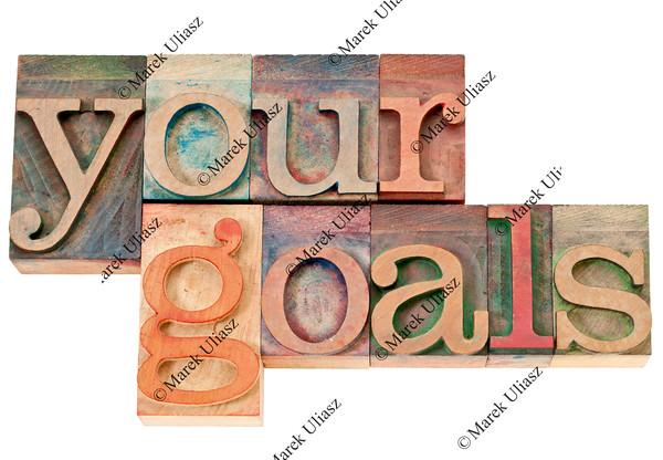 your goals in wood type
