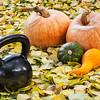 iron kettlebell and pumpkin