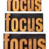 focus concept in wood type