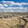 sagebrush high desert in Wyoming
