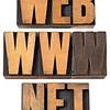 web, www, net  words in wood type