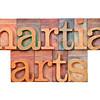 martial arts in letterpress type