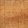 grunge oily wood texture