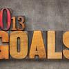2013 goals