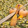 old paddles and pumpkin