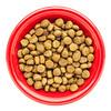 bowl of dry dog food