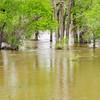 North Platte RIver at flooding