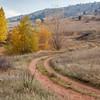 dirt road in Colorado foothills