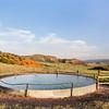 cattle water tank