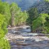 river rapid in springtime