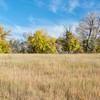 prairie fall scenery