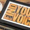 find your voice concept