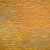 grunge varnish wood background