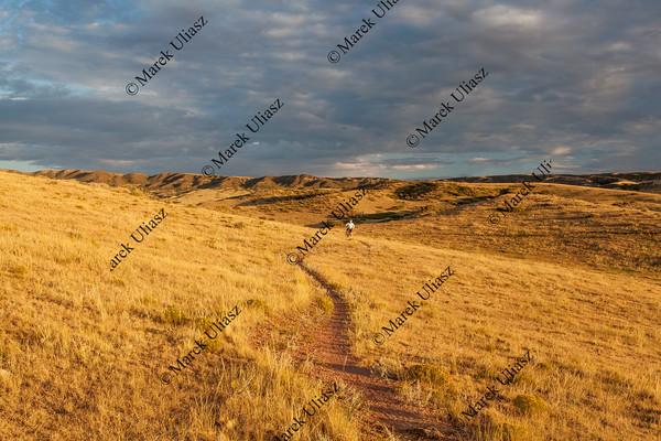 sunrise over Colorado prairie