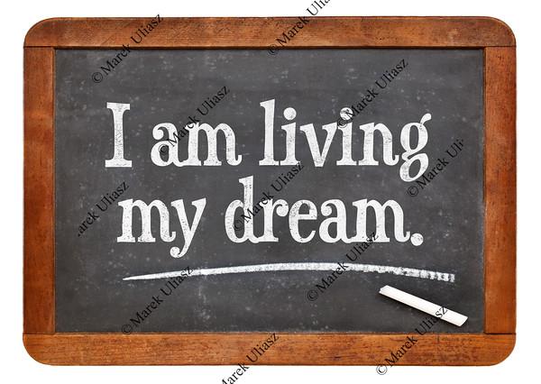 I am living my dream