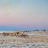winter dusk over prairie