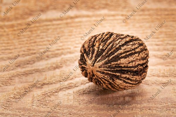 black  walnut on wood