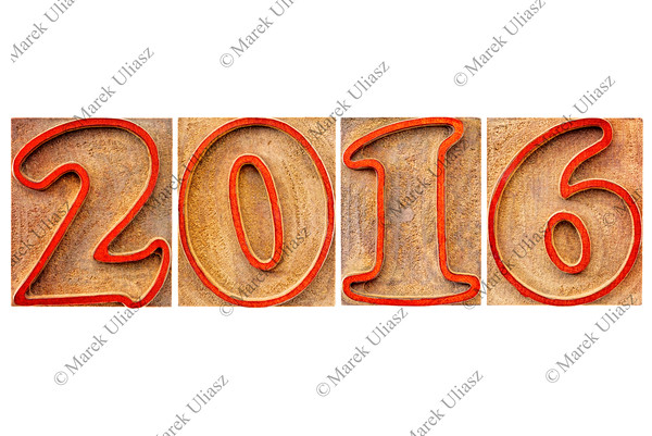 year 2016 in wood type